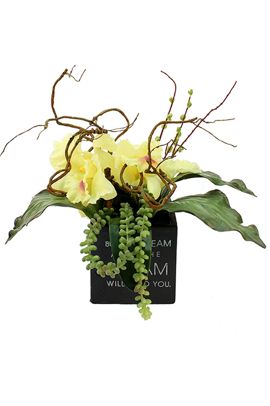 Cattleya orchid with greenery in ceramic pot with message