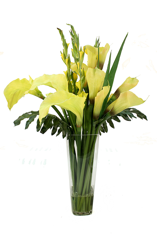 Yellow calla lilies and tall yellow gladioli