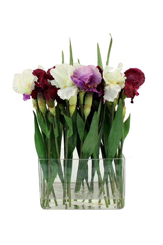 Cropped german iris lilies in rectangular vase