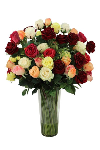 Large mix of roses in dark red to pastels